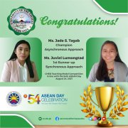 <strong>维维萨亚斯大学-Jade S. Tagab和Juviel Lumongtad获得CHED教学模式比赛冠</strong>